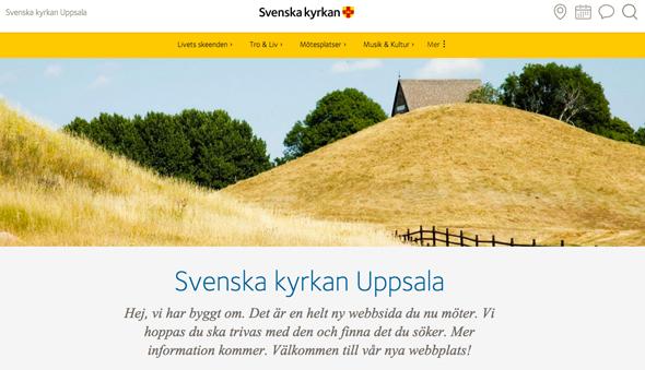 SvkUa-ny-webb-590